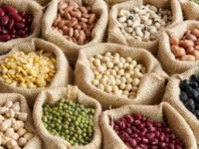 Why you should eat legumes